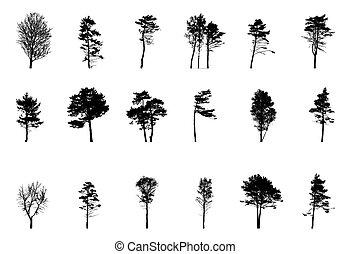 set, illustration., boompje, vrijstaand, achtergrond., vector, groen wit