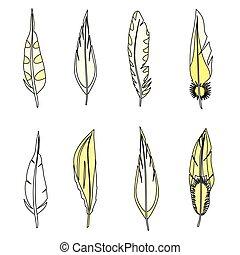 set, illustration., feathers., isolato, vettore, white.