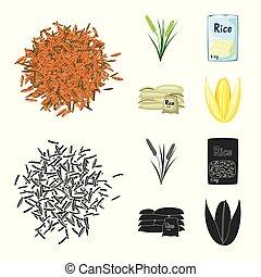 set, illustration., voorwerp, vrijstaand, oogst, ecologisch, vector, het koken, icon., liggen