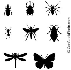 set, insect, 01