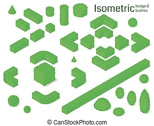 set., isométrico, arbustos, seto