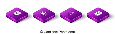 Set Isometric Shield and marijuana, Marijuana or cannabis leaf, plant in pot and seeds icon. Vector