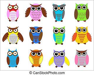 set, kleur, owls.