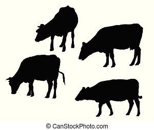 set, koe, vrijstaand, realistisch, silhouettes, achtergrond, witte