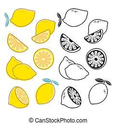 set, limone, agrume, giallo, tagli, vettore, nero, frutte, bianco