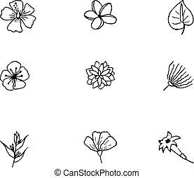 set, mano, tropicale, flowers., vettore, disegnato