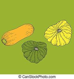 set, maturo, succoso, giallo, patisson, verde, iso, zucchini