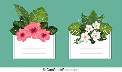 set, mette foglie, decorazione, cartelle, fiori