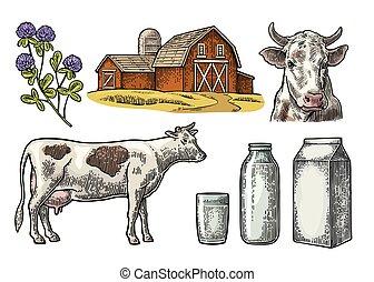 Set Milk farm. Cow head, clover, box carton package, glass...