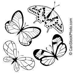 set, nero, bianco, farfalle, di, uno, ta