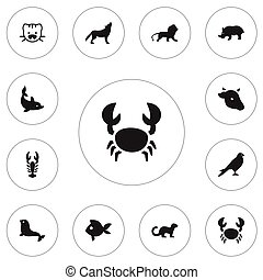 Set Of 12 Editable Zoo Icons. Includes Symbols Such As Crawfish, Turbot, Polecat And More. Can Be Used For Web, Mobile, UI And Infographic Design.