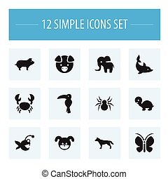 Set Of 12 Editable Zoology Icons. Includes Symbols Such As Pig, Tropical Bird, Moth And More. Can Be Used For Web, Mobile, UI And Infographic Design.