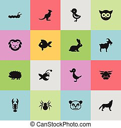 Set Of 16 Editable Zoology Icons. Includes Symbols Such As Wallaby, Night Fowl, Ox And More. Can Be Used For Web, Mobile, UI And Infographic Design.