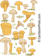 Set of 18 different types of mushrooms