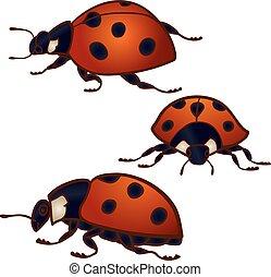 Set of 3 ladybugs