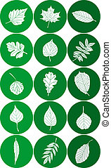 Set of Abstract Leaf Icons