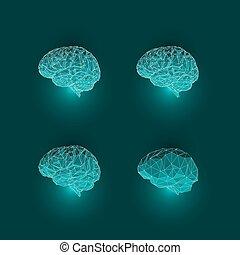 Set of Active Human Brains on Dark Background