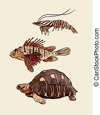 Set of animal, hand draw sketch vector.