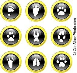 animal track icons
