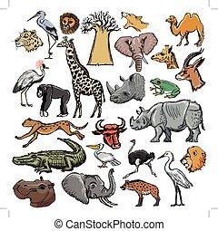 set of animals with elephant, crocodile, lion, rhinoceros, giraffe