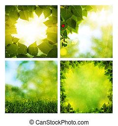 Set of assorted summer natural backgrounds for your design