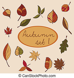 Set of autumn leaves for your design.