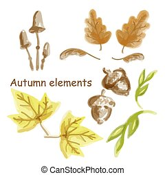 Set of autumn leaves, mushroom and acorns isolated on white background. Autumn elements watercolor style.