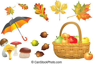 Set of autumn objects. Mushrooms, umbrella, wicker basket with apples, acorns and leaves. Vector illustration collection.