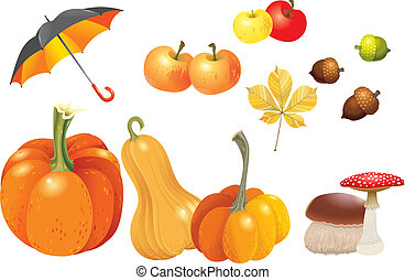Set of autumn objects. Pumpkins different types, mushrooms, umbrella, apples, acorns and leaf. Vector illustration collection.