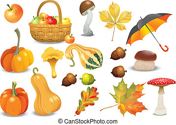 Set of autumn objects. Pumpkins different types, mushrooms, umbrella, apples, acorns and leaves. Vector illustration collection.