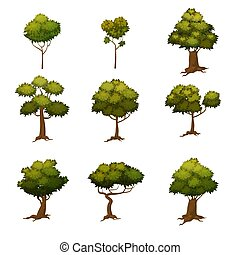 Set of autumn trees, different types, modern trend design, cartoon style, vector, illustration, isolated