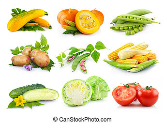 Set of autumnal vegetables isolated on white background