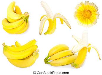 set of banana on a white background