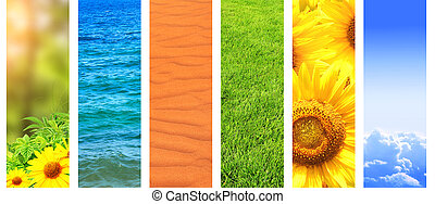 Set of banner with nature details