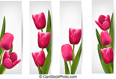 Set of banners with pink flower. Vector