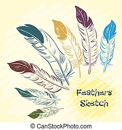 Set of beautiful colored feather. Sketch feathers. Vector