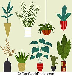 Set of beautiful indoor plants. Flowers in pots. Gardening decoration. Vector illustration in flat cartoon style.