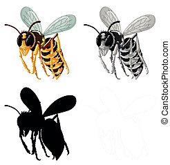 Set of bee on white background