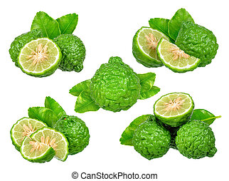 Set of Bergamot isolated on white background