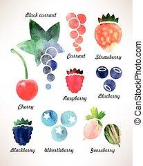 Set of berries