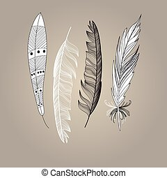 Set of bird feathers graphic