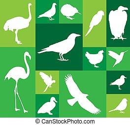 Set of bird icons