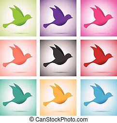 set of birds in flight