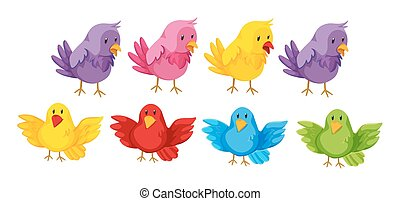 Set of birds with colorful feather