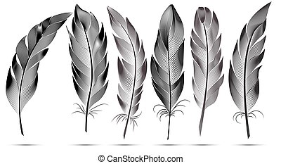 Set of black and white big fluffy feathers