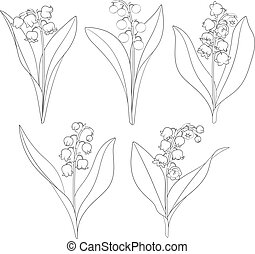Set of black and white images with lilies of the valley. Isolated vector objects.
