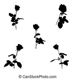 Set of Black and white silhouette of rose. Isolated on White Background. vector Illustration