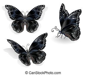 Set of black butterflies morpho