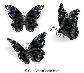 Set of black butterflies morpho