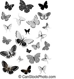 set of black butterflies